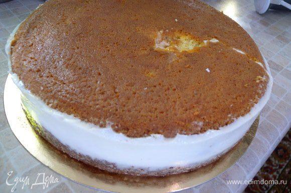Бисквит в форме 24. (заготовка для торта уже с кремом)