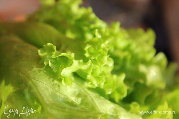 Листья салата помыть, обсушить, порвать руками.