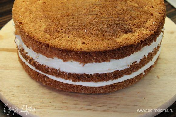 Готовый бисквит разрезать на три коржа. Два нижних прослоить кремом и сложить в торт.