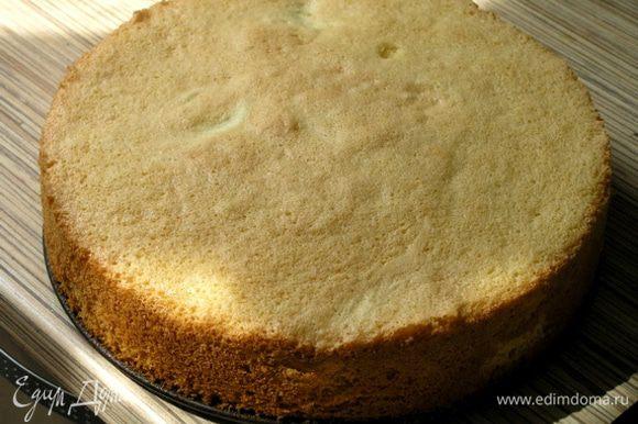 Вот и все! Идеальный бисквит готов! :)