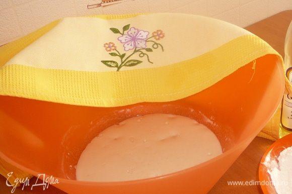 Разводим в теплой воде 120 г муки (из общего количества) , дрожжи, соль, сахар и оставляем на 20 - 30 мин. Минут через 30 на опаре должна появиться шапка из пены.