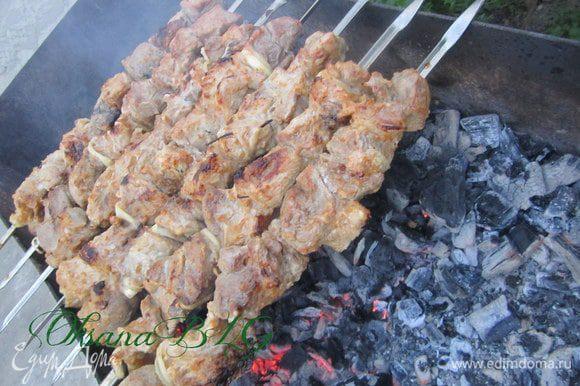 Нанизать мясо на шампура, жарить до готовности, постоянно поворачивая шампура.