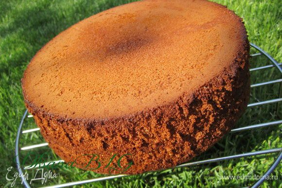 Форму застелить пергаментом, бока смазать растительным маслом. Бисквит выпекать в разогретой духовке (180 градусов) 30 и более минут, готовность проверить шпажкой она должна быть совершенно сухой.