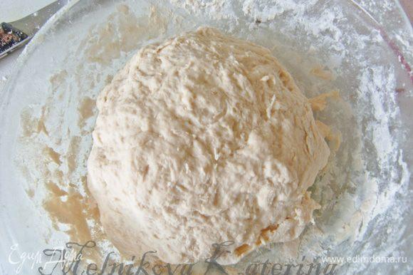 Замесить тесто. Положить в тару, смазанную оливковым маслом, затянуть пищевой пленкой и поставить в теплое и укромное место на 1 час для подхода.