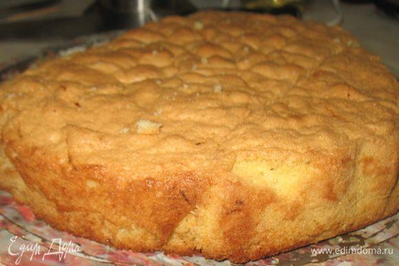Бисквитный корж был приготовлен по рецепту Евы http://www.edimdoma.ru/retsepty/31180-biskvit-sekret-prigotovleniya-pechenie-savoyardi. Только готовила 2 порцию и немного увеличила количество муки, чтобы был немного плотнее.