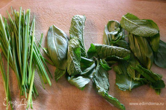Шнитт-лук мелко режем, базилик и мяту рвем руками.