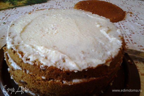 Остывший бисквит разрезаем на коржи и смазываем кремом