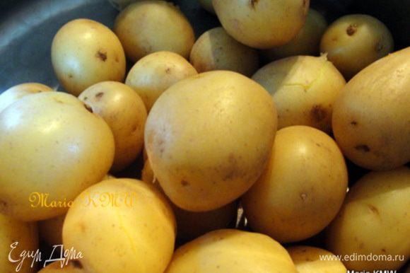 Отварить молодую картошку до готовности. Воду слить.