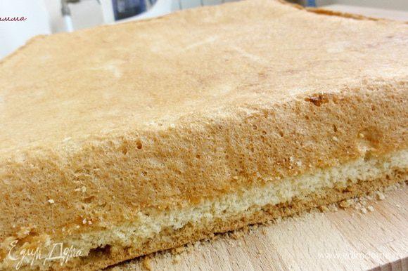 Бисквит выпекайте минут 40-45 не открывая духовки. Проверьте спичкой, она должна быть сухой. Готовый бисквит выньте из формы и дайте остыть. До того как вы начнете с ним работать, бисквит следует выдержать 5-6 часов.