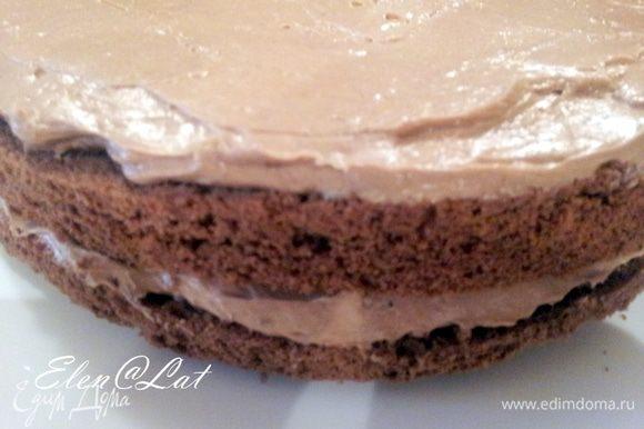 Далее, после того как крем готов, и бисквит разрезан, приступим к сборке торта. для этого крем разделить на две части и промазать два нижних коржа.
