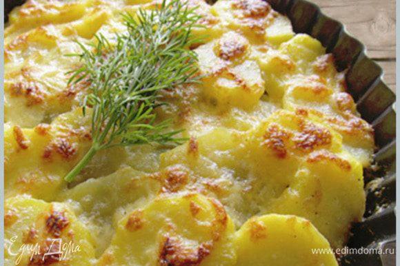 Сливки смешать с сыром, солью, травами и залить запеканку. Поставить в духовку запекать до поджаристой корочки!