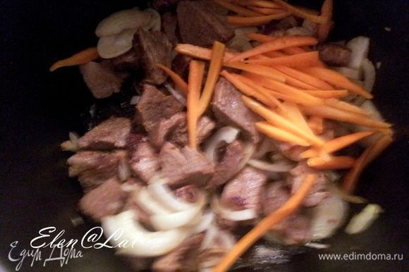 Мясо посолить и поперчить, посыпать специями. Укладываем слои. К мясу добавить слой нарезанного репчатого лука и морковь соломкой.