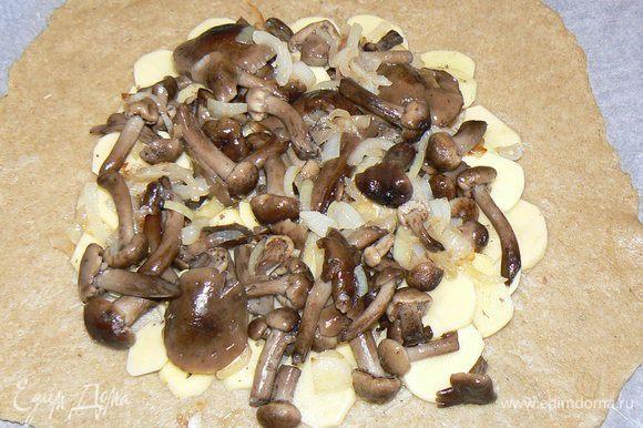 и грибы с луком