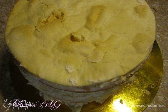 """После такой """"процедуры"""" торт будет ровненьким.) Оставить торт пропитывать при комнатной температуре на 5-6 часов, только в умеренно жарком помещении. Если очень жарко, время сокращаем до 2-3 часов. затем отправить торт на 6-7 часов в холодильник для пропитки."""