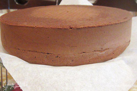 Края бисквит должны получится гладкими, матовыми и практически ровными.