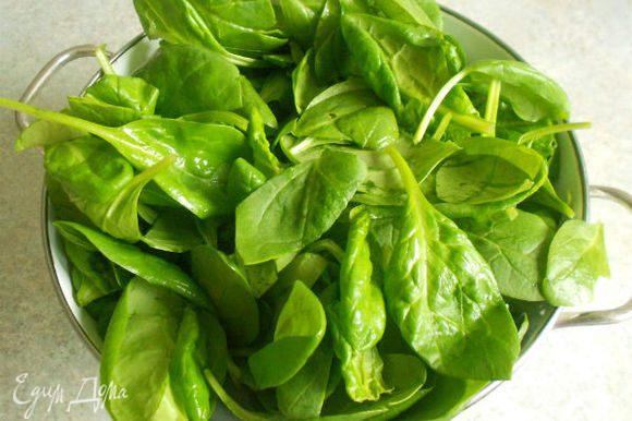 Промытый шпинат поместить в большой сотейник с 3 ст.л. воды и готовить, помешивая 3-4 мин. Он должен стать мягче, но не утратить своей текстуры.