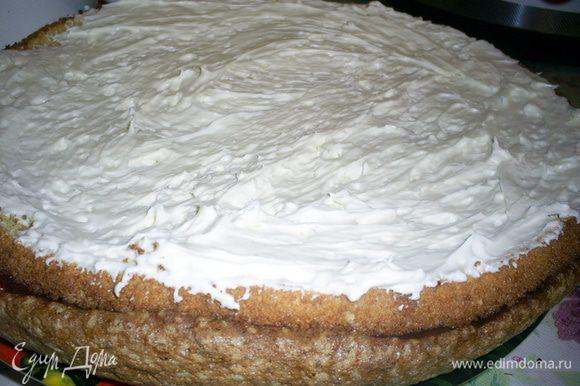 На безе с шоколадной прослойкой кладем первый корж и смазываем половиной крема.