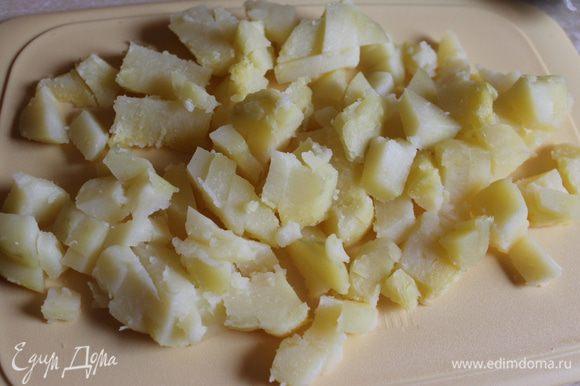 Отвариваем картофель, остужаем и режем кубиками..