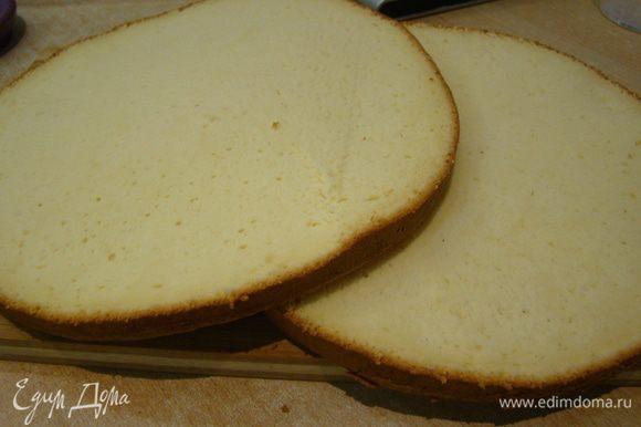 Бисквит печем по рецепту http://www.edimdoma.ru/retsepty/53844-biskvitnyy-tort-medovyy-hlopok но с указанными здесь ингредиентами (другая пропорция); разрезаем вдоль на 2 коржа.