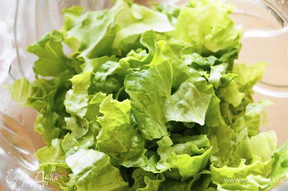 На дно салатницы порвать руками зеленый салат