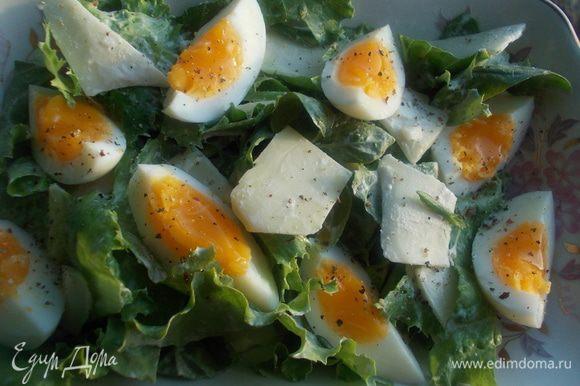 Сверху порезать яйца и сыр на овощерезке,чтобы получились тонкие пластинки. Затем все заправить немного взбитым оливковым маслом с солью, сливками и перцем. Подавать к столу!!!!!