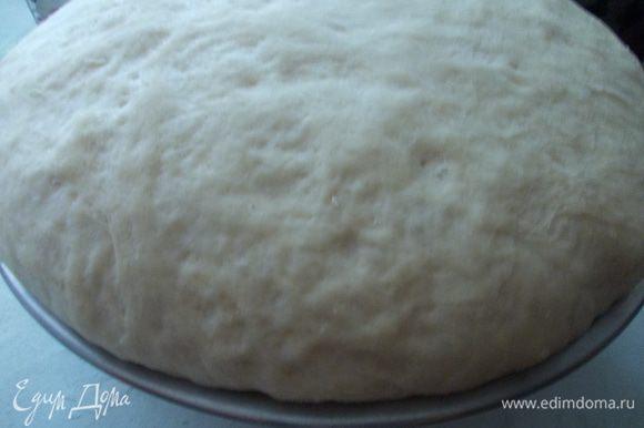Затем тесто накрываем полотенцем и ставим в теплое место на час. Оно должно подняться в три раза.