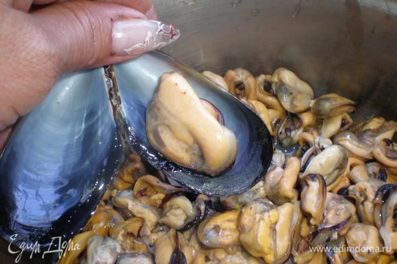 После того, как наловишь мидий, их нужно нагреть, чтобы они раскрылись. Потом нужно выскрести всё содержимое раковины. Затем обязательно вычистить водоросли, которыми мидии крепятся к камням и промыть проточной водичкой.