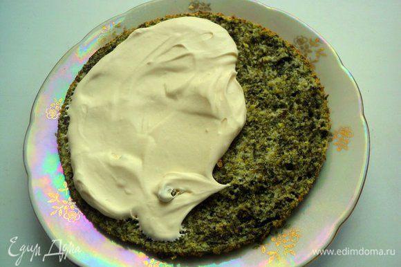Прослоить пласты бисквита сливочным кремом.