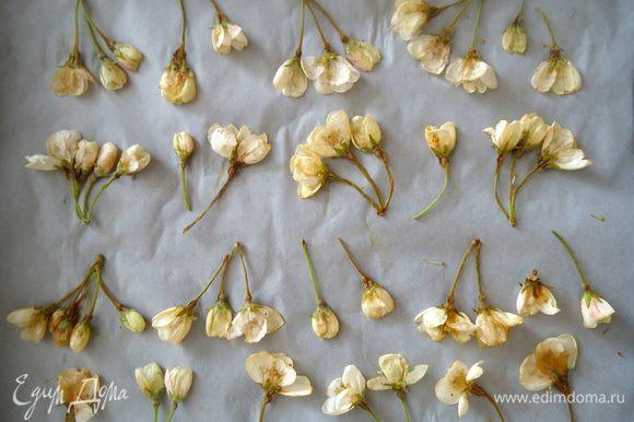 Бутоны яблони промыть водой, обмакнуть полотенцем. Положить под пресс, между двумя досками на некоторое время, что бы цветы сплющились. Противень выстелить бумагой для выпечки. Цветы разложить на бумаге.