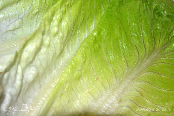Листья салата промыть,высушить и порвать руками на кусочки среднего размера.