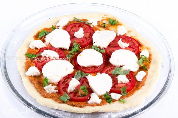 Распределить куски моцареллы, нарезанный оставшиеся помидоры и листья базилика.