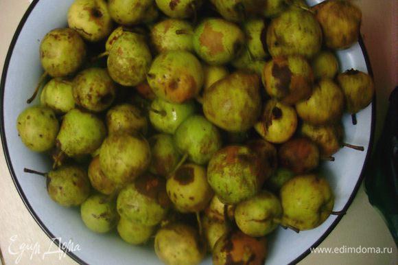 Дать грушам доспеть (чтобы они были мягкими и сладкими, но еще не начали портится). Убрать черешки и смолоть груши на мясорубке.