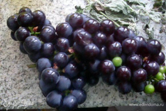 Отделить виноград от кистей и ягодками заполнить литровую бутылку.