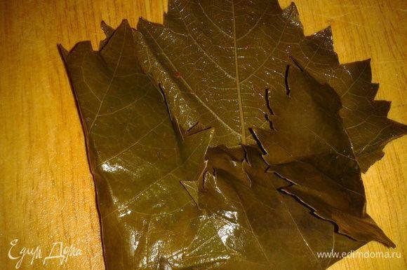 Загните лист снизу, затем по бокам.