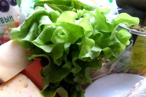 Салатные листья промываем,просушиваем,отбираем самые широкие.