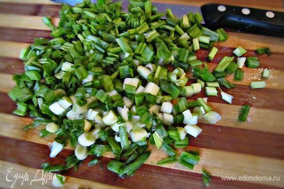 Далее - моем, обсушиваем и нарезаем мелко зелёный лук. Выкладываем следующим слоем, слегка подсаливаем и смазываем майонезом.