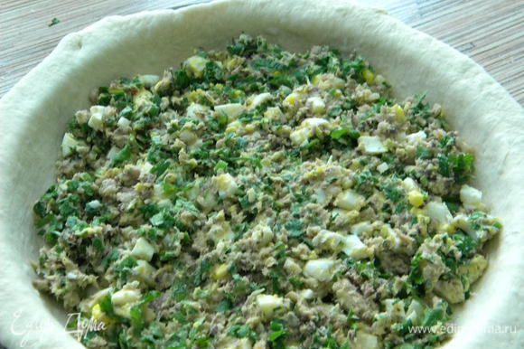 Раскатываем тесто, кладем на форму и выкладываем начинку.