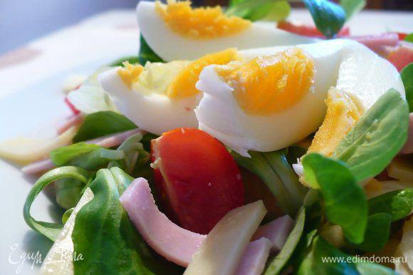 Распределяем заправку по салату, остывшее яйцо выкладываем на салат. Приятного аппетита!