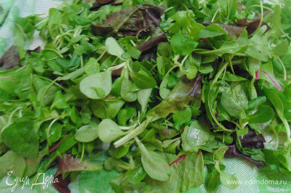 Салатные листья помыть, обсушить.