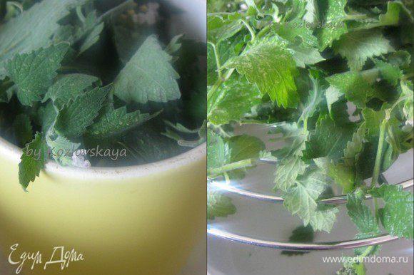 Отмерить стаканом ( 250 гр) два с половиной стакана , слегка утрамбовывая листья. Листья мяты тщательно промыть, обсушить.