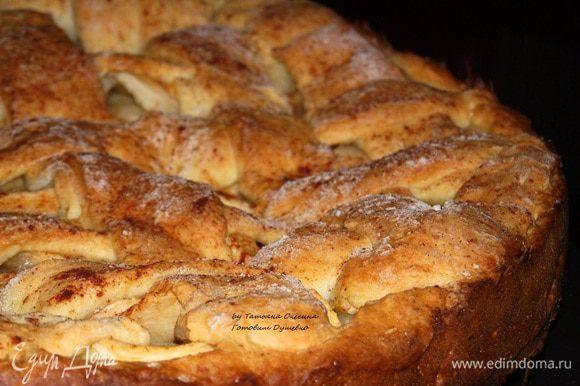 Отправляем в духовку на 40-45 мнут. Золотистая корочка свидетельствует о готовности пирога. Дайте постоять пирогу 20 минут, чтобы он немного «отдышался», накройте его ситцевой салфеткой или вафельным полотенцем. Потом приступайте к подаче.