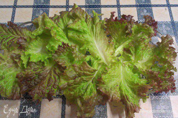 Начинаем собирать наш салат. Салат россо помыть, высушить бумажными полотенцами и выложить на дно блюда.