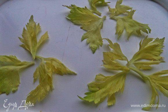 Приготовить заранее плоскую тарелку и выложить листики петрушки или сельдерея. Смешать масло и сок.