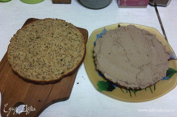 Готовый и остывший бисквит разрезаем на 2 части: смазываем кремом, затем также промазываем верх и бока бисквита. Убираем на ночь в холодильник. За ночь он хорошо пропитается, и к утру станет необыкновенным :)