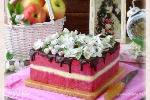 Украсить торт засахаренными соцветиями яблони.