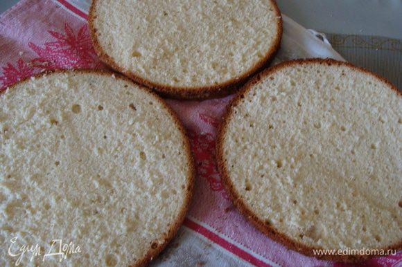 Разрежем бисквит на две части. Я разрезала на три, чтобы коржи были тоньше.