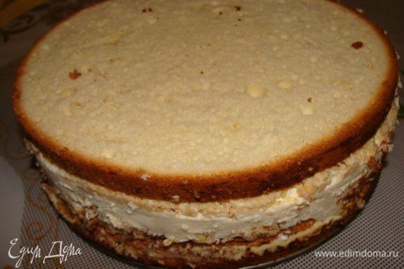 Выложить мусс сверху вафельного коржа. Затем положить сверху еще один вафельный корж, приготовленный таким же образом. Часть миндаля немного оставить для украшения. Сверху намазать оставшимся заварным кремом, положить второй бисквит. Поставить охладиться в холодильник на 1 час. Затем освободить торт из разъемной формы.
