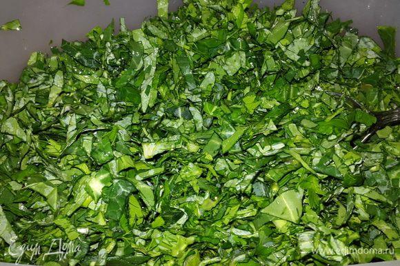 Соединяем капусту и зелень, солим, перчим, тщательно перемешиваем и оставляем на 10 минут.
