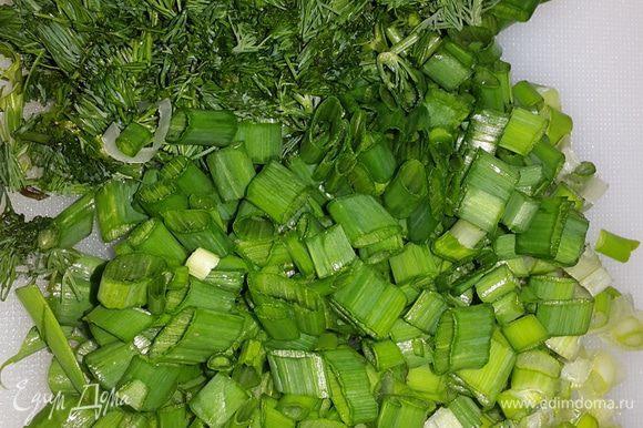 Зеленый лук и укроп мелко режем.