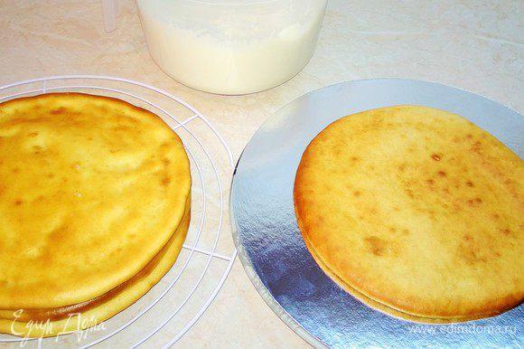 Основные коржи. Сметану вылить в яично-сахарную смесь. Перемешать. Муку 1 стакан просеять и добавить в яично-сметанную смесь. Тесто должно быть как на оладьи. Вылить в форму, застеленную бумагой, и выпекать при 170С до золотистого цвета. Проверять деревянной палочкой. Приготовить три коржа.